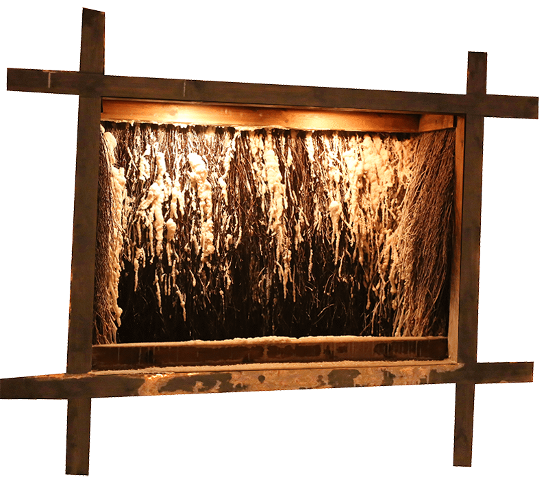 salzgrotte-alb-grenadierwerk-freigestellt